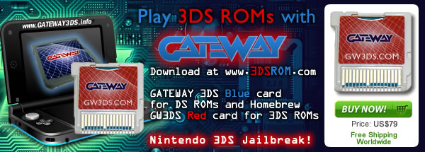 Gateway 3DS rom card